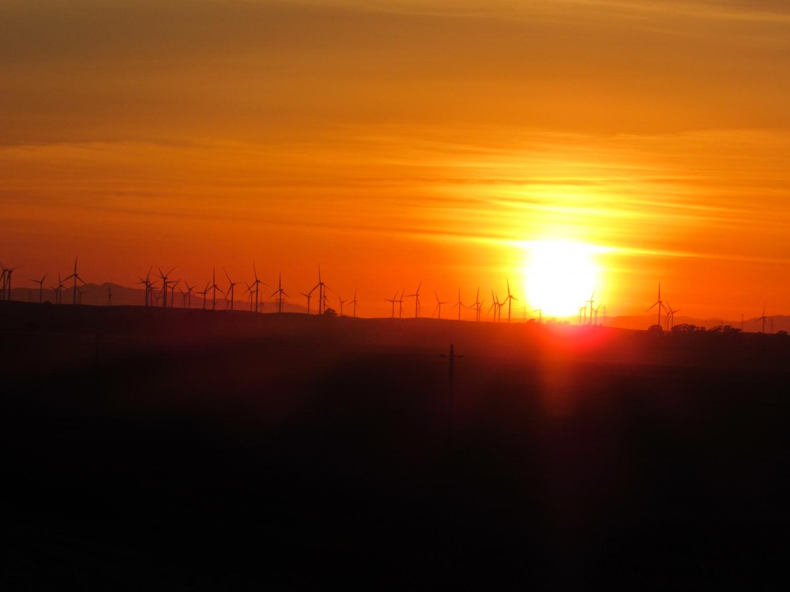 Sunset-on-Brannan-Island