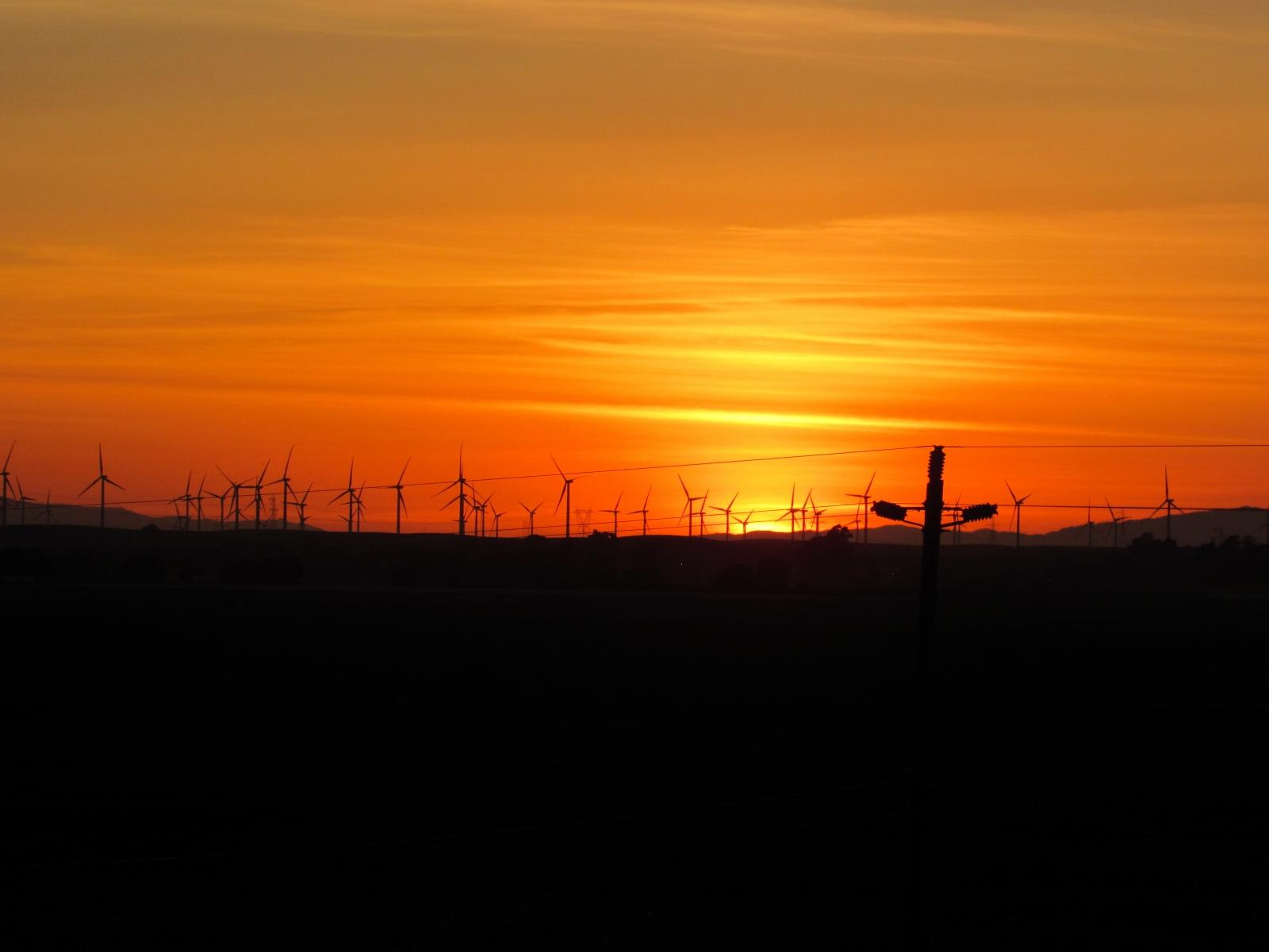 Windmills-in-the-glow
