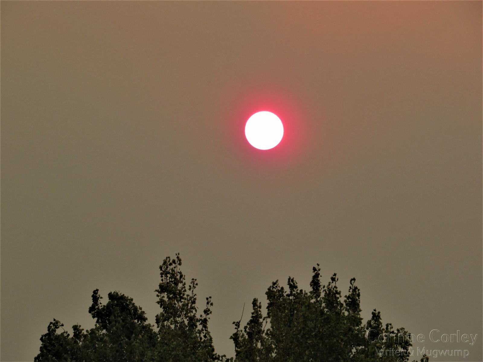 Sun-in-a-smokey-sky
