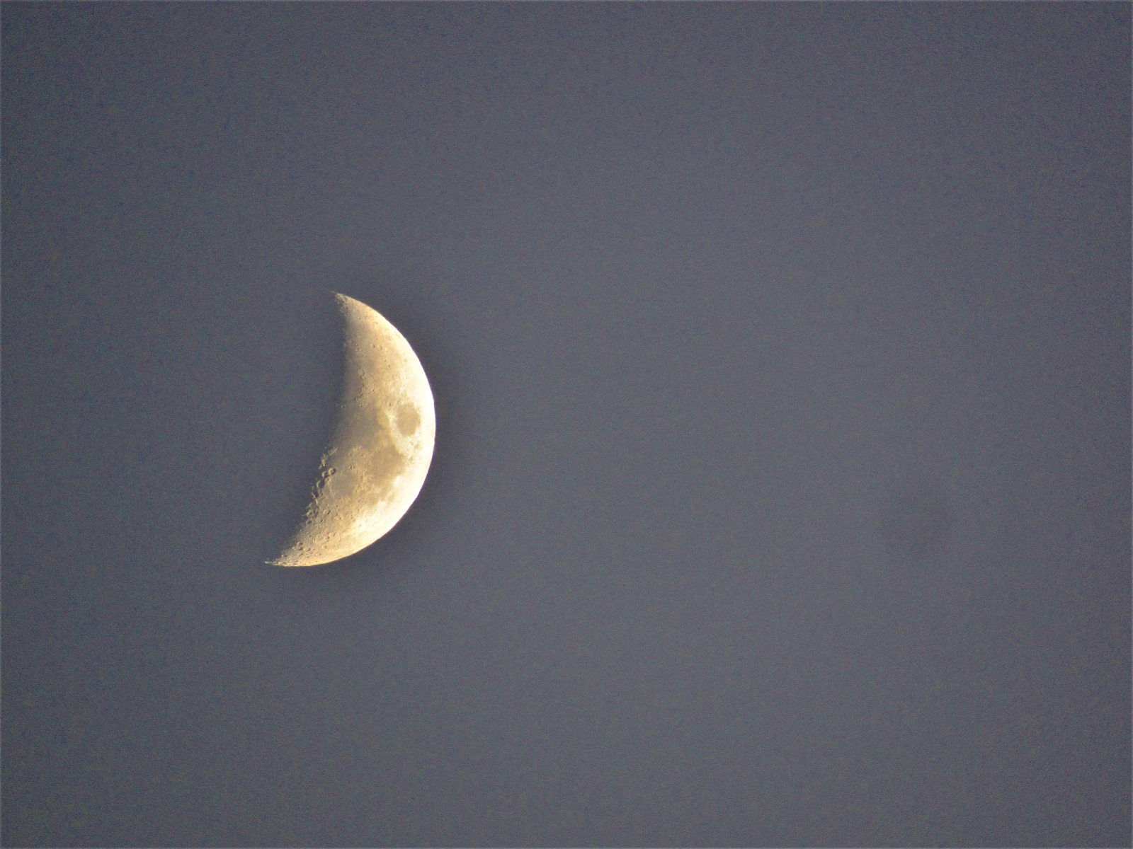 Moon-for-Jane