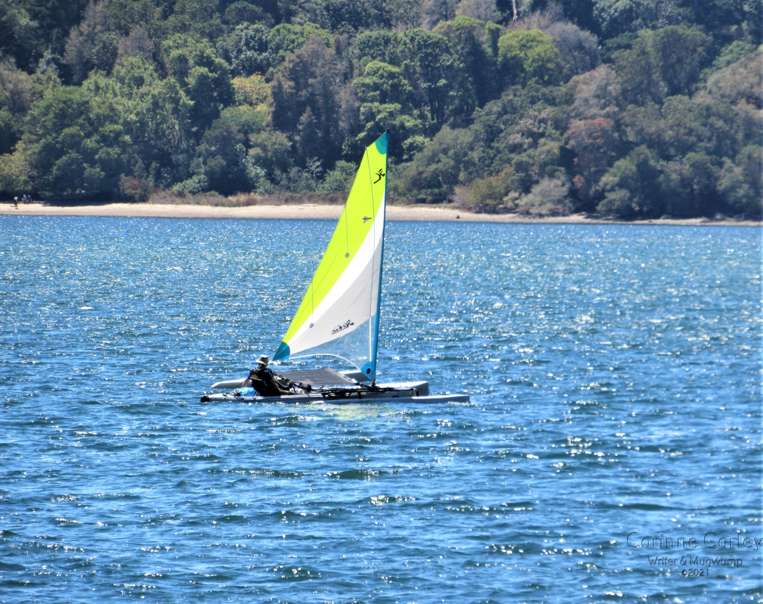 Sail-on-the-Bay
