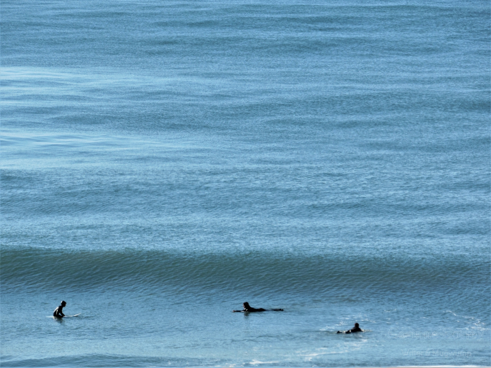 Surfers-in-the-blue
