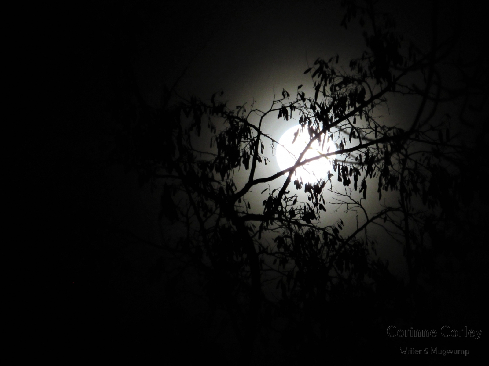 Dec-Moon-2