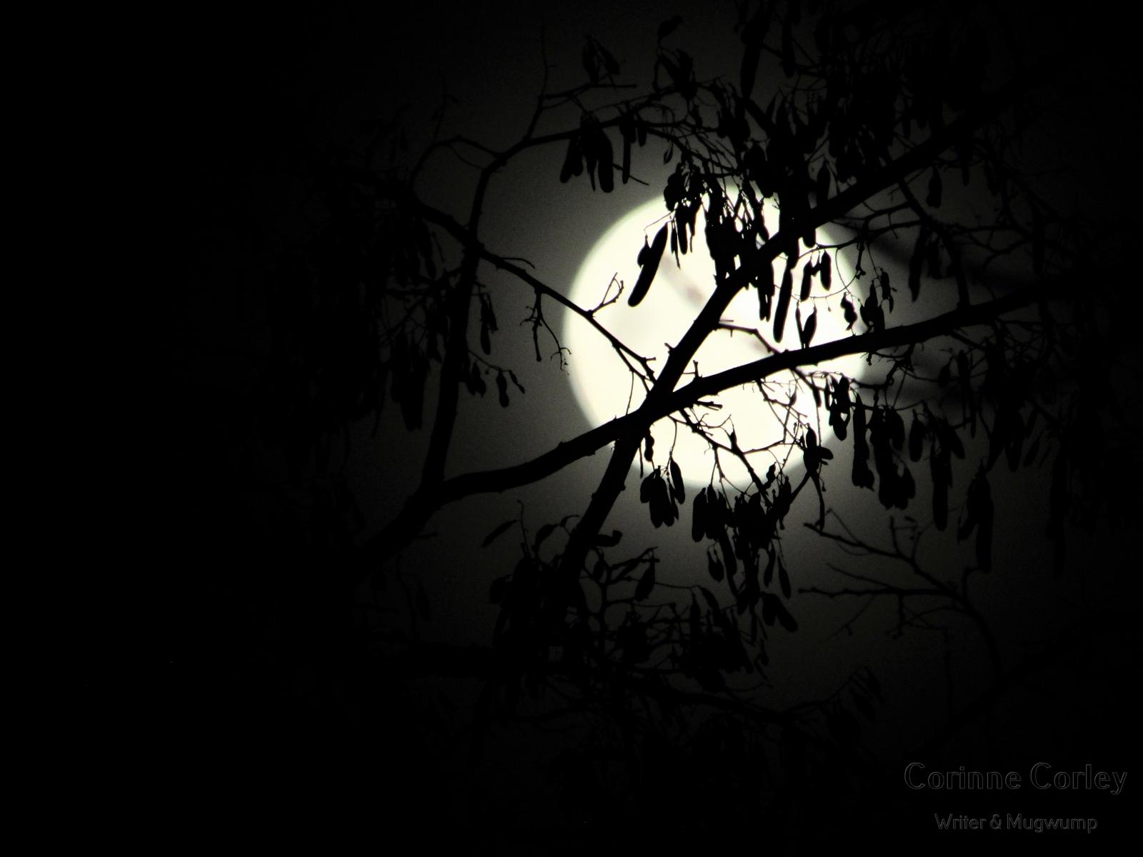 Dec-Moon-4