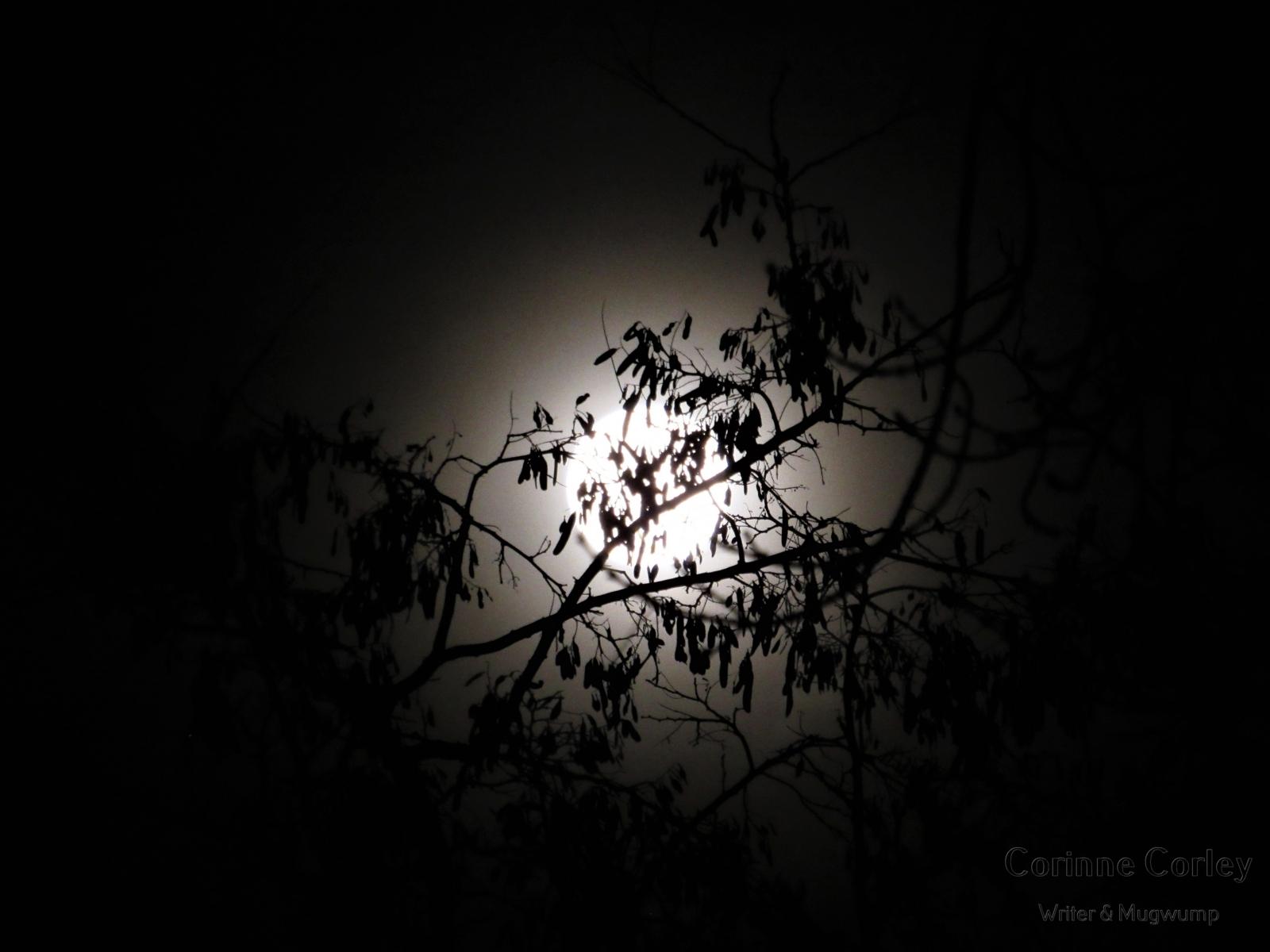 Dec-Moon-7