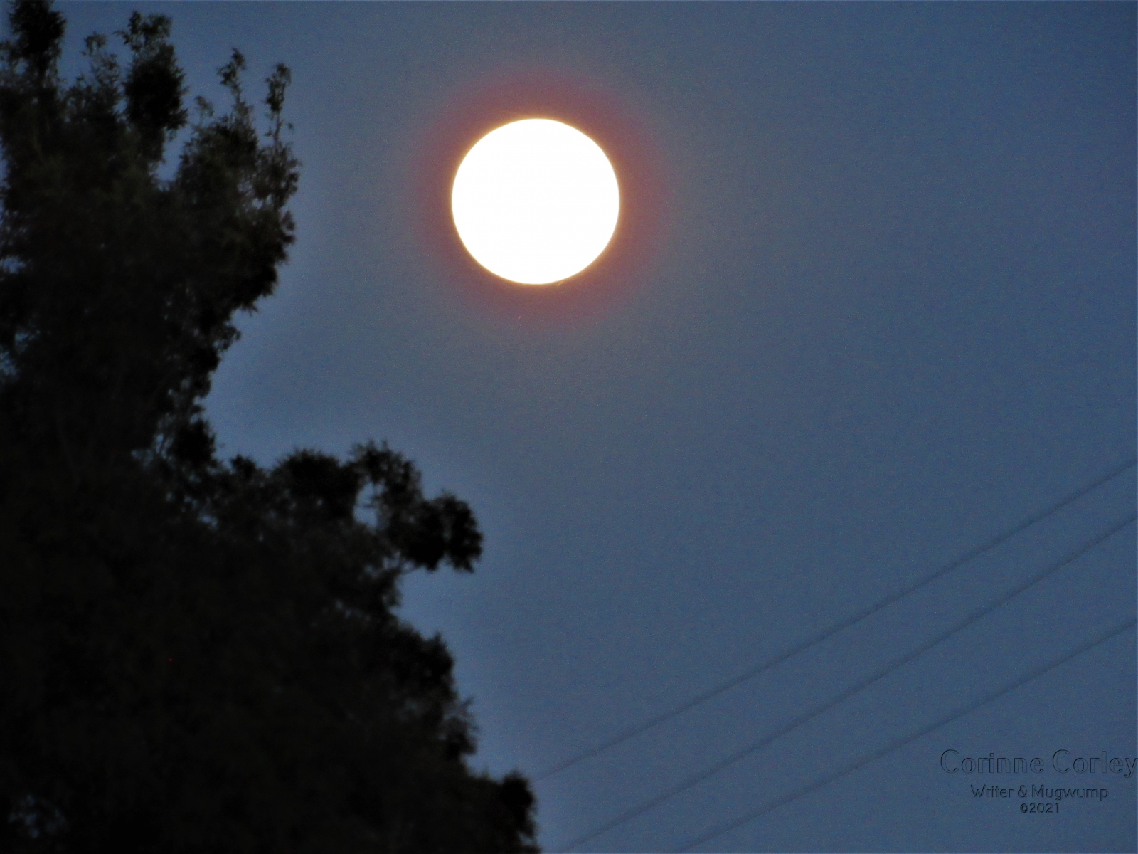 May-Full-Moon-15
