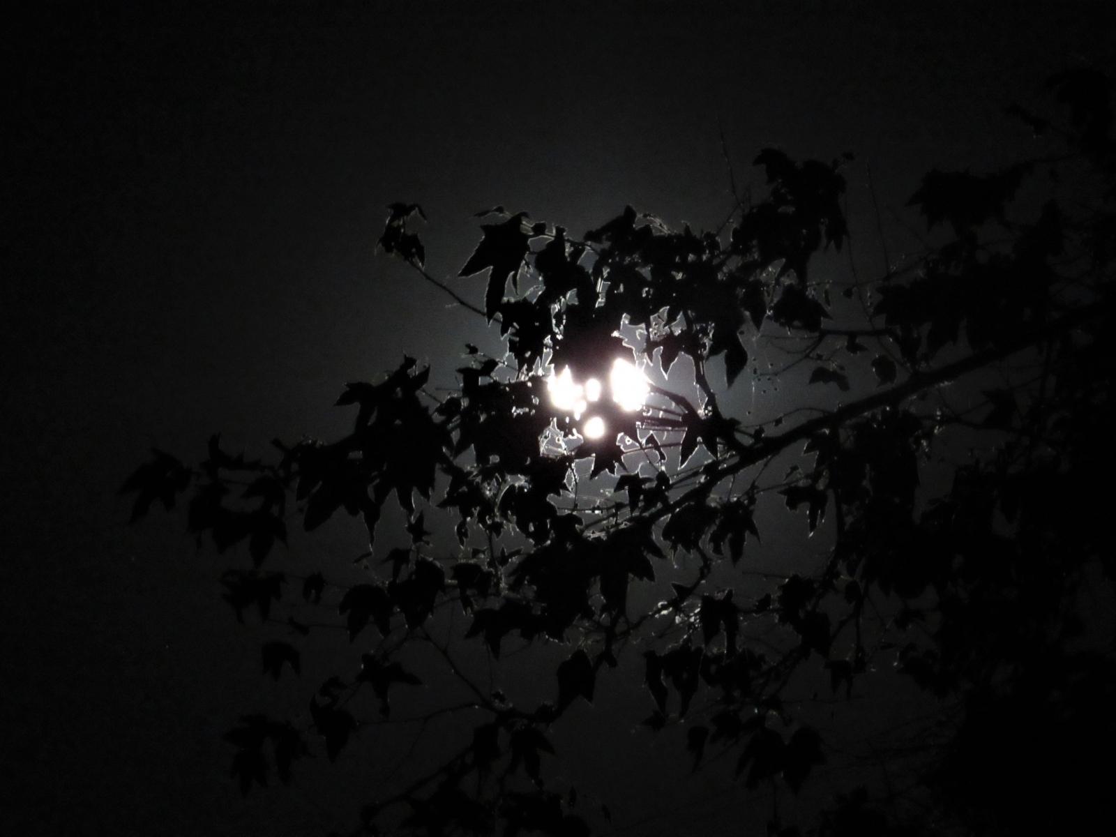May-Full-Moon-6