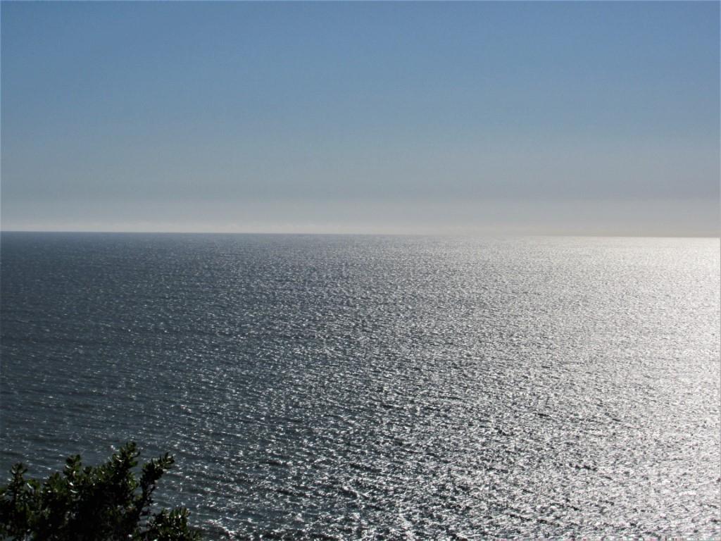 OceanSaturday30-Medium