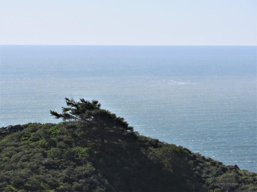 OceanSaturday31-Medium-Copy
