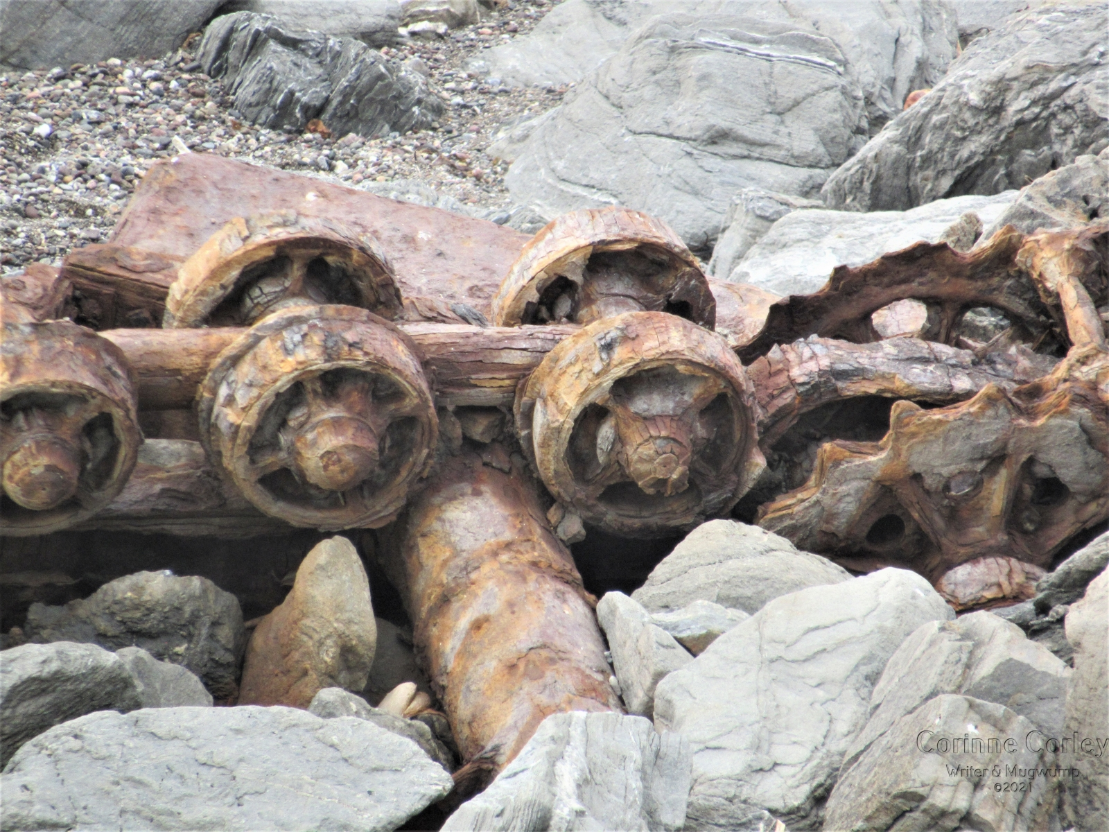 Ancient-wheels