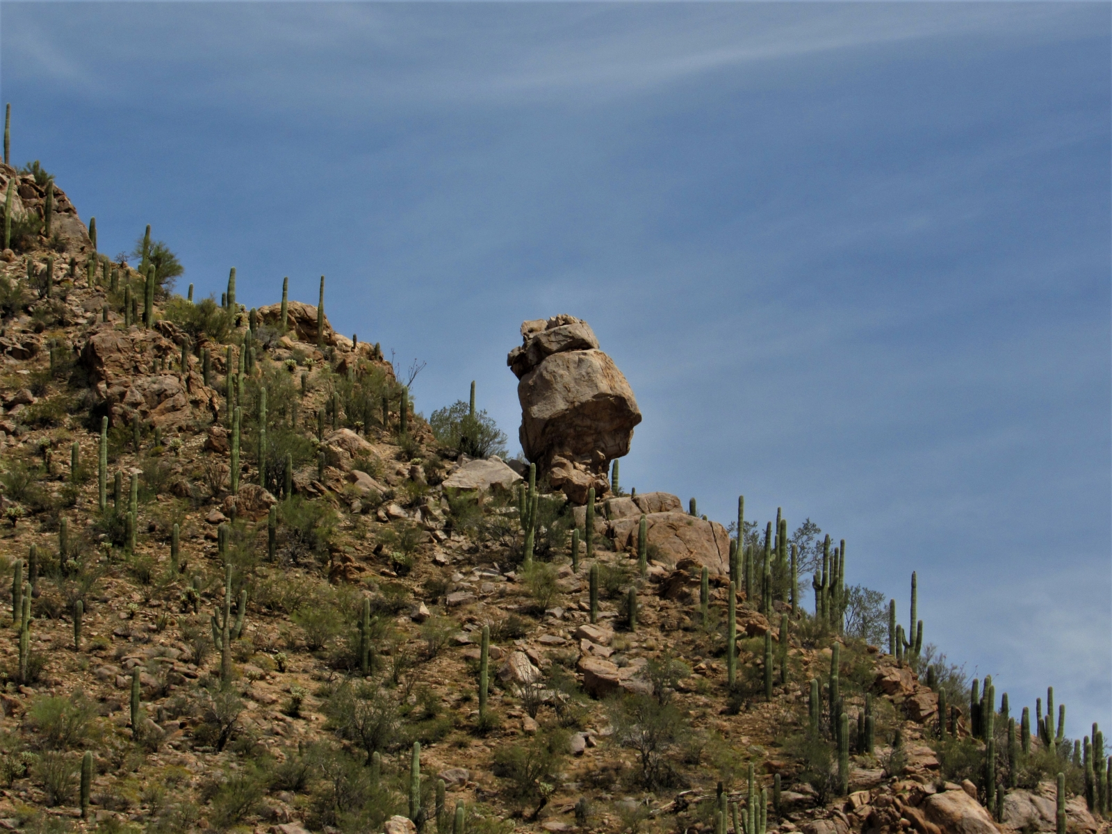 Saguaro-West-Rock-Formation-2
