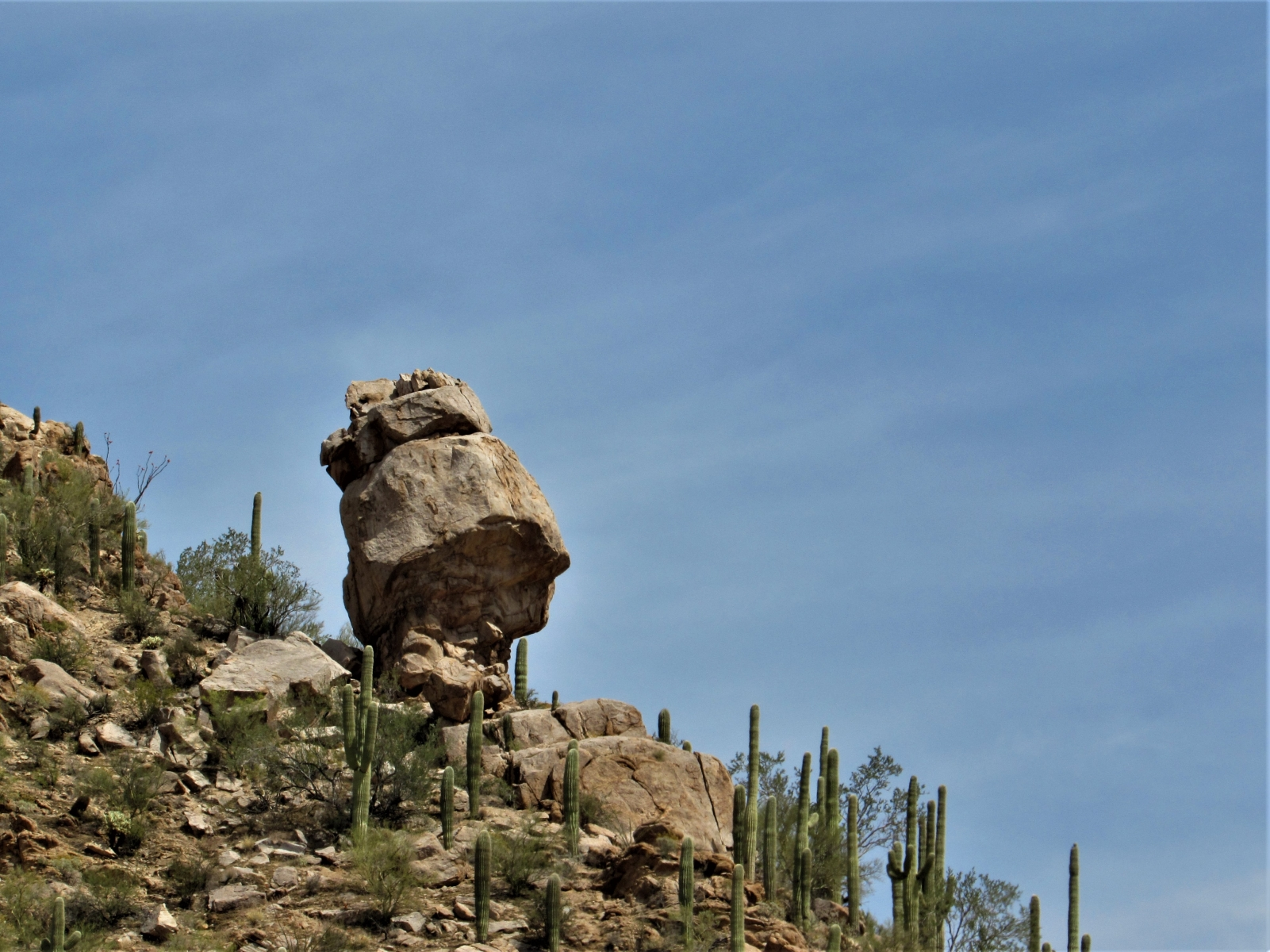 Saguaro-West-Rock-Formation