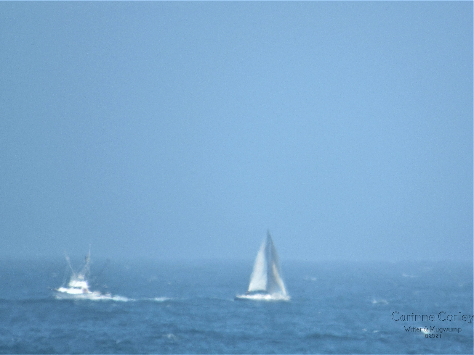 Boats-in-the-distance