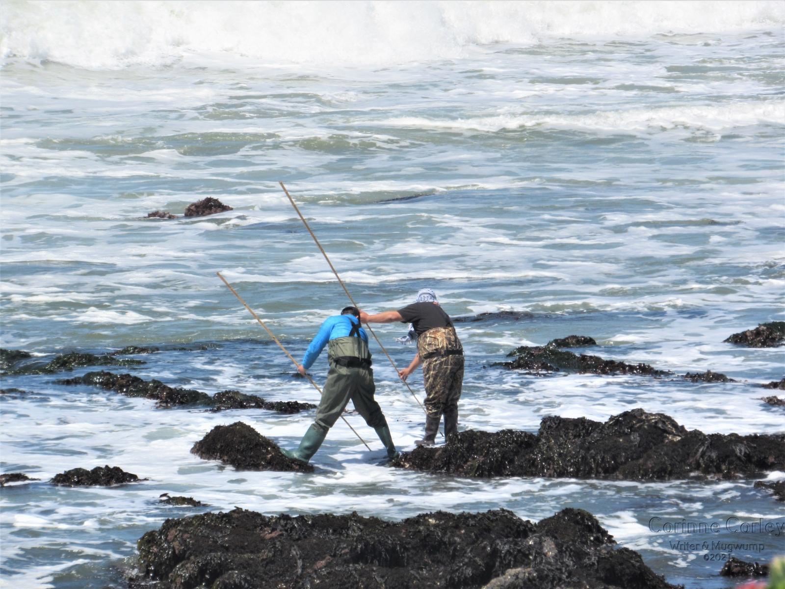 Tandem-fisherfolk
