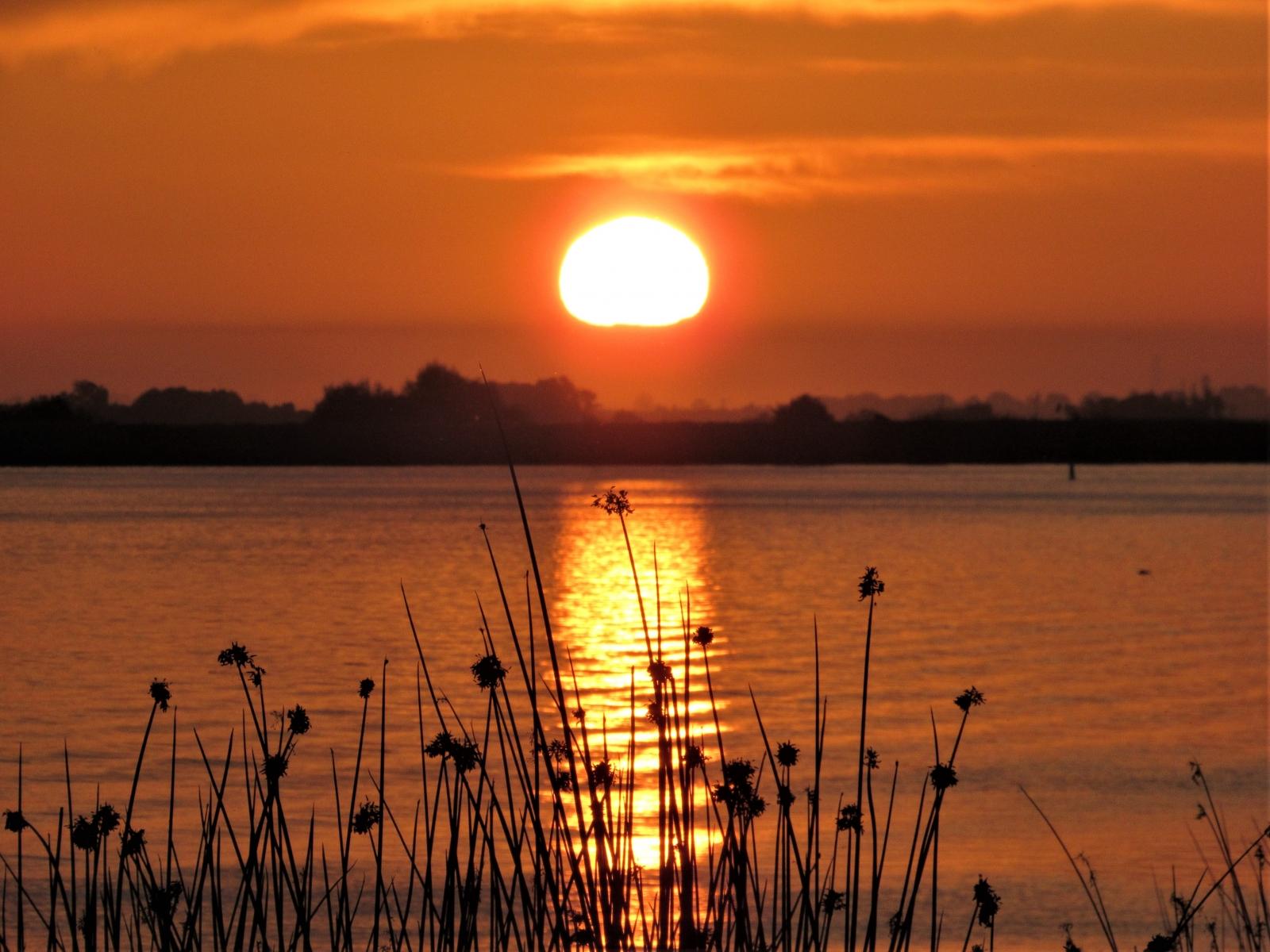 Sunrise-10