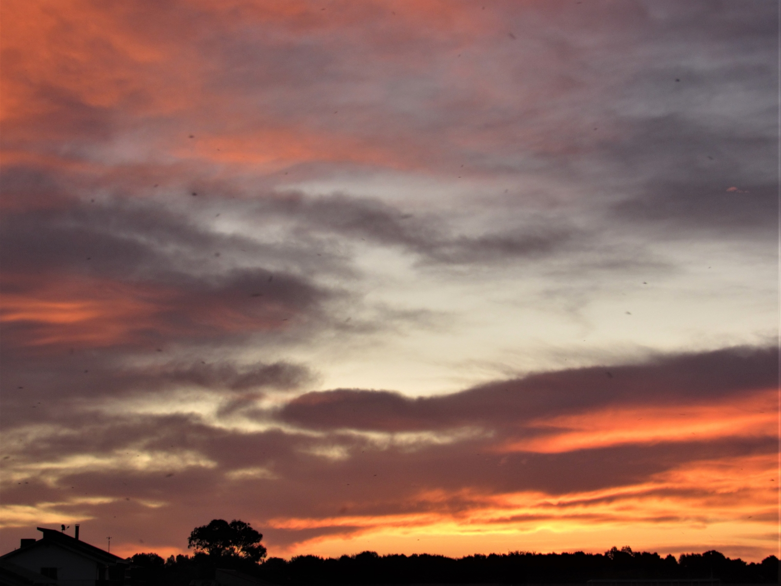 Sunrise-3