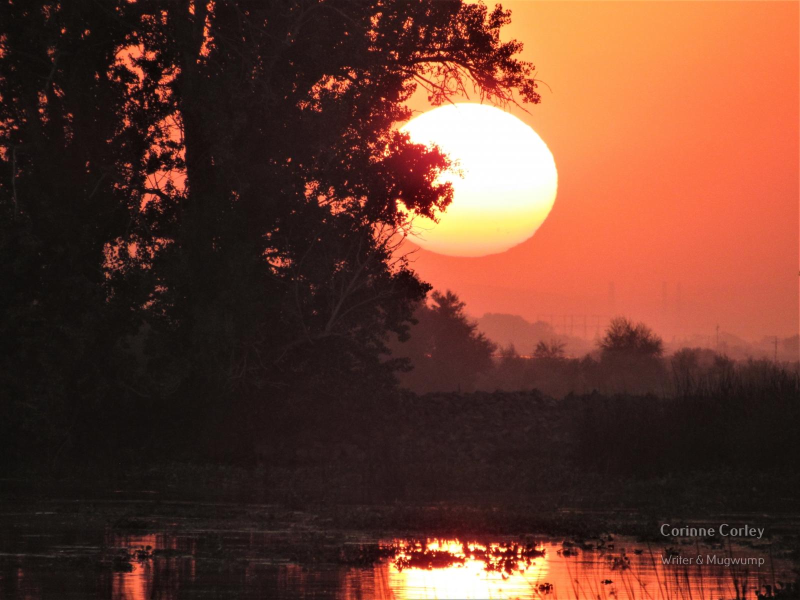 Delta-sunset-3