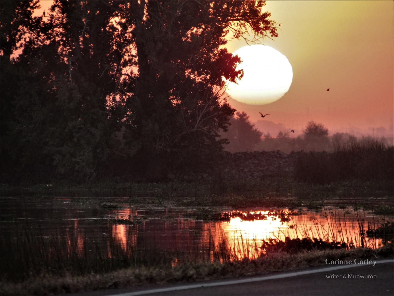 Delta-sunset-4