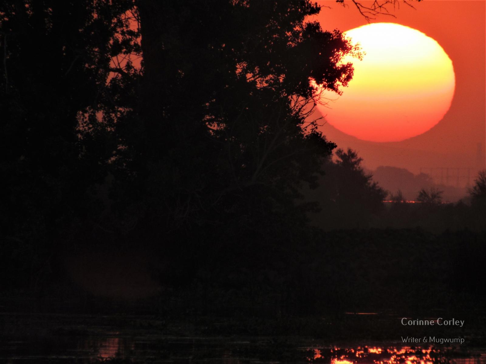 Delta-sunset-5