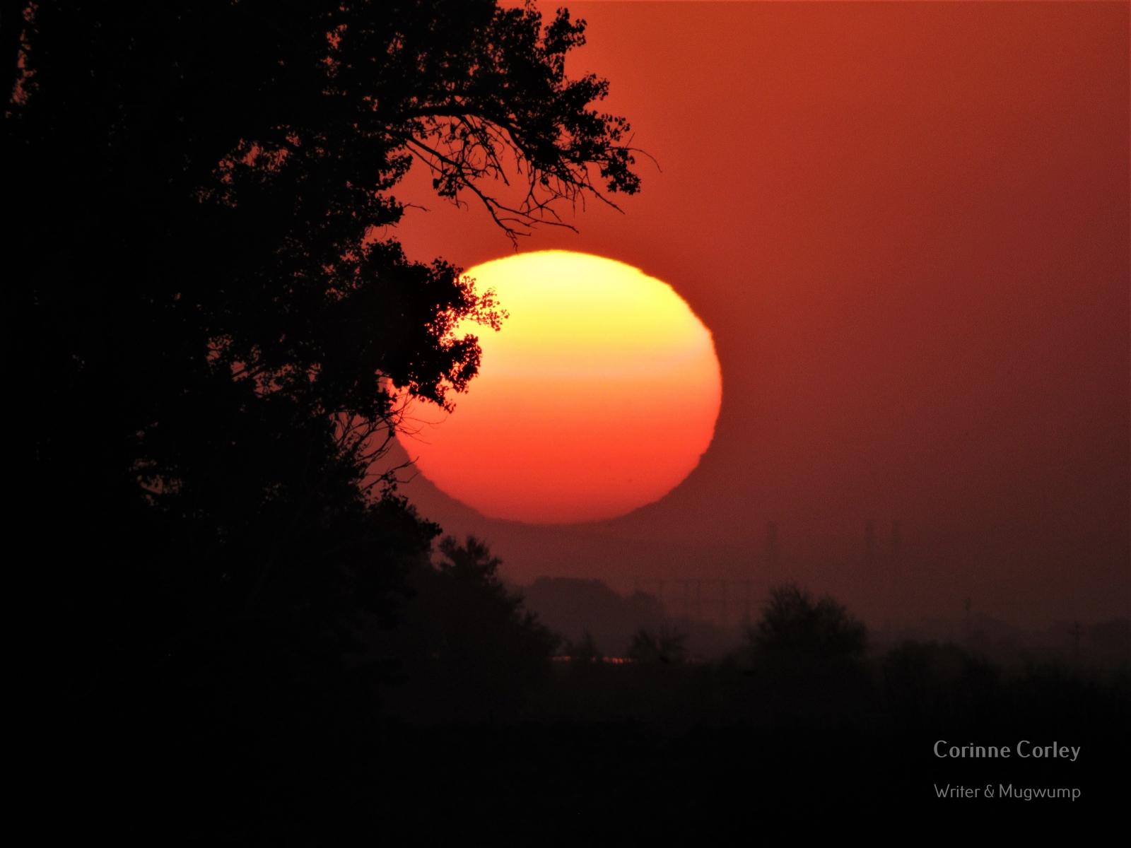 Delta-sunset-6