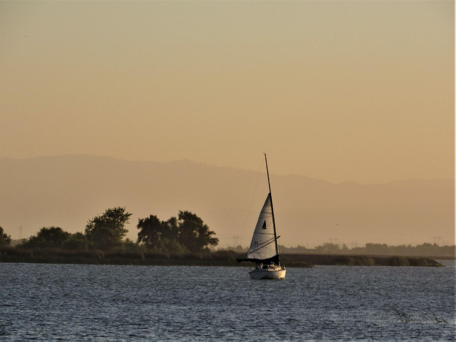 Evening-sail