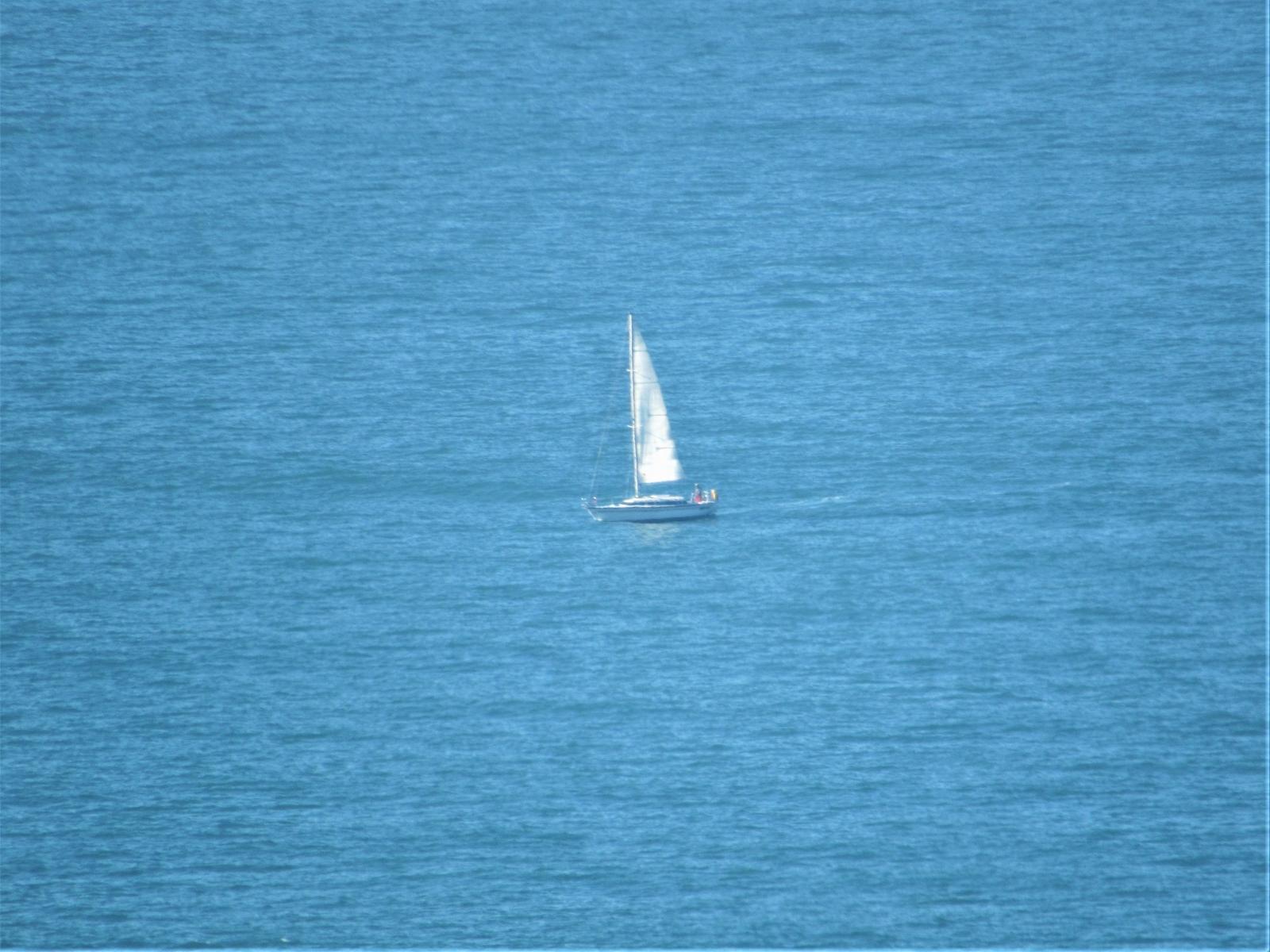 Solo-sail