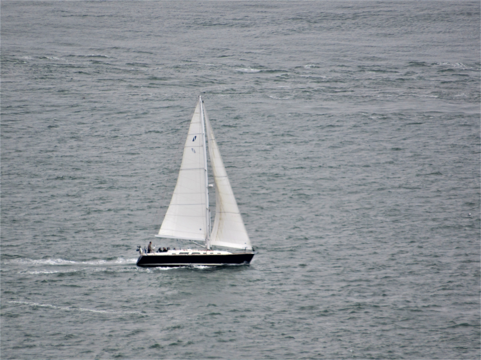Sailboat-headed-out-to-sea